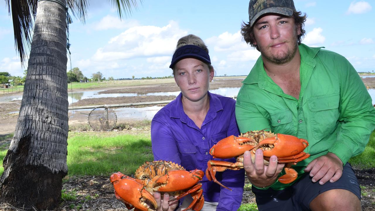 Commercial crabbers Sienna Green and Dale Venerare among the Burdekin crabbers being told not to send mud crabs to market with the coronavirus sending Asian diners into lock down. PHOTO: Mikayla Mayoh