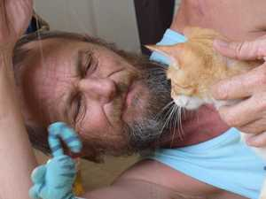 Gympie region cat owners excluded from national subsidy scheme