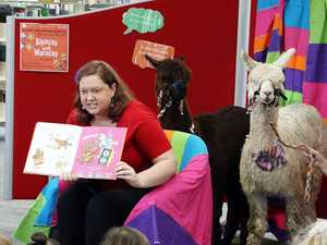 Alpacas join in for storytime at the library