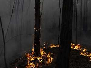 Corporate Australia holds the key to bushfire recovery