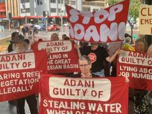 Adani pleads guilty to misleading government