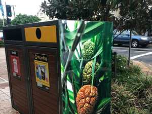 Why art is popping up on bins around the Ballina Shire