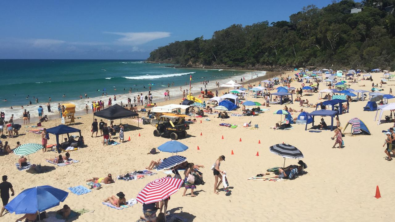 Noosa tourists give their honest feedback on the beautiful coastal region.