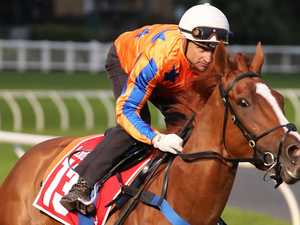 Shark has plenty in tank after first Group 1 win