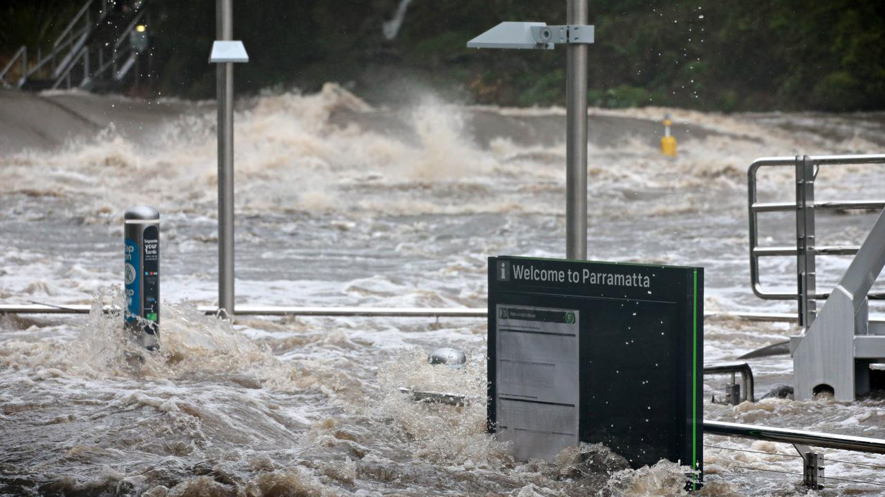 Parramatta River flooding. Picture: Adam Yip