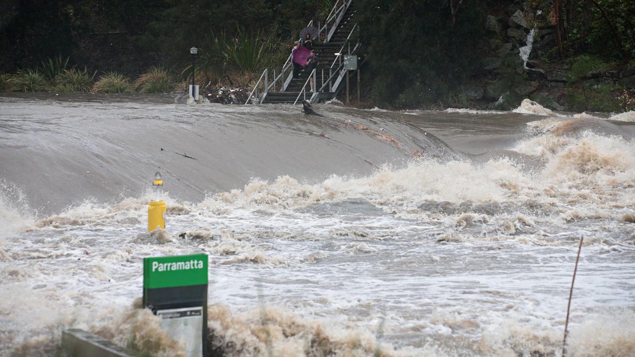 Parramatta River flooding. Picture: Adam Yip
