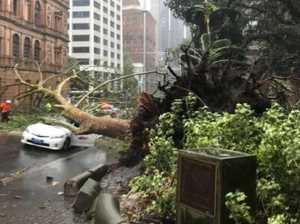 Sydney swamped as entire streets go under