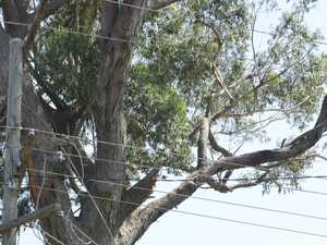 OUTAGE: 700+ without power across Rockhampton