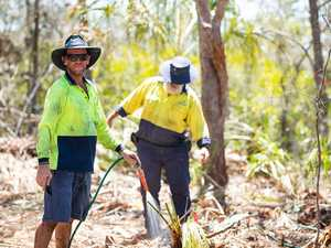 Council investigates complaints over land clearing