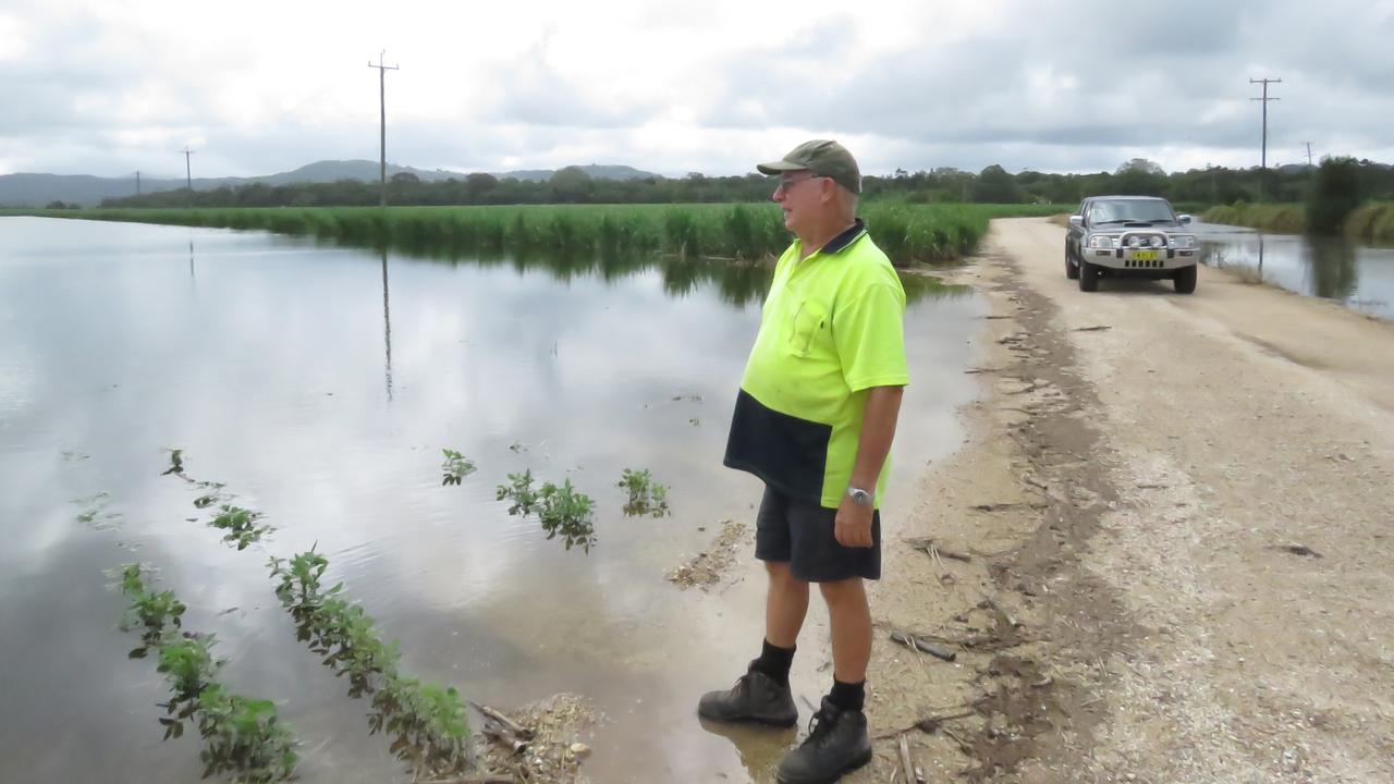 Duranbah cane farmer Robert Quirk surveys the aftermath the of the weekend downpour which saw around 650mm dumped on his property, destroying his soy bean crops and leaving fields of cane inundated.