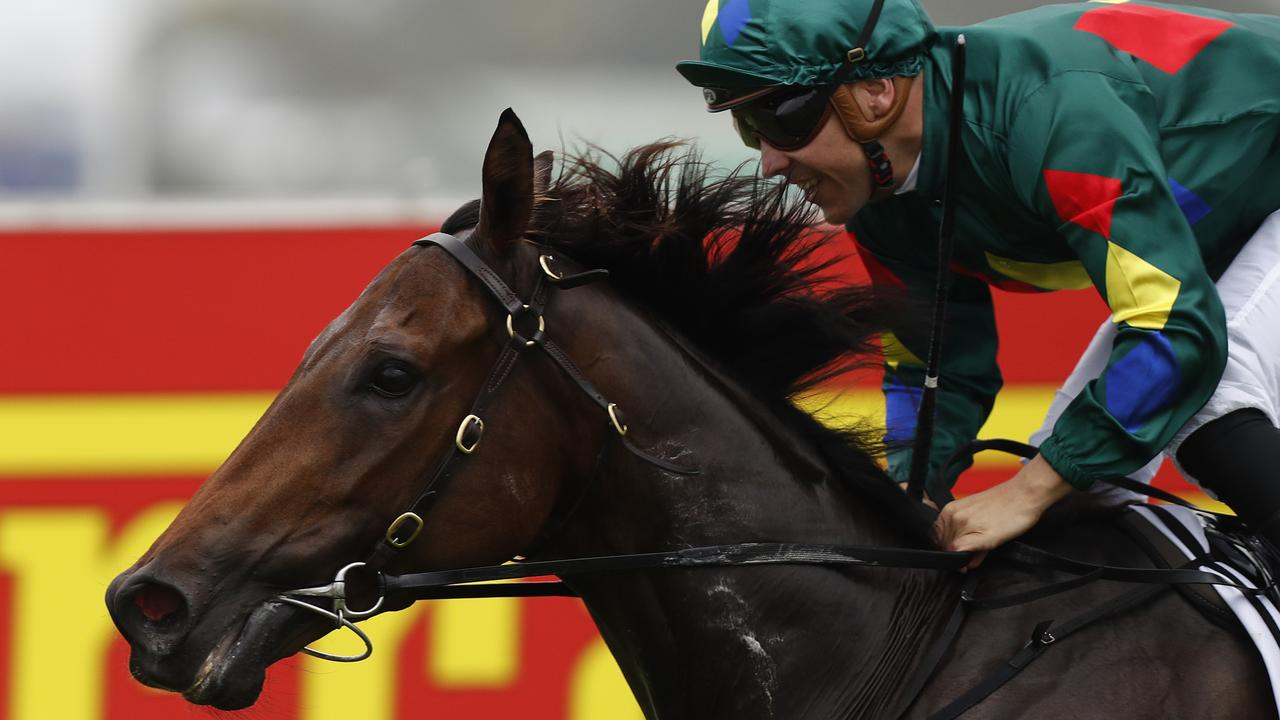 Alligator Blood has settled in well at Flemington. Picture: Getty Images