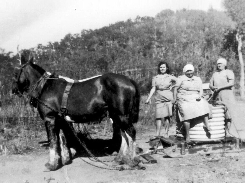 Mt Ossa 1946 – Anna and Prasede Raiteri, and Maria Todeschino fetching water with horse and sledge.