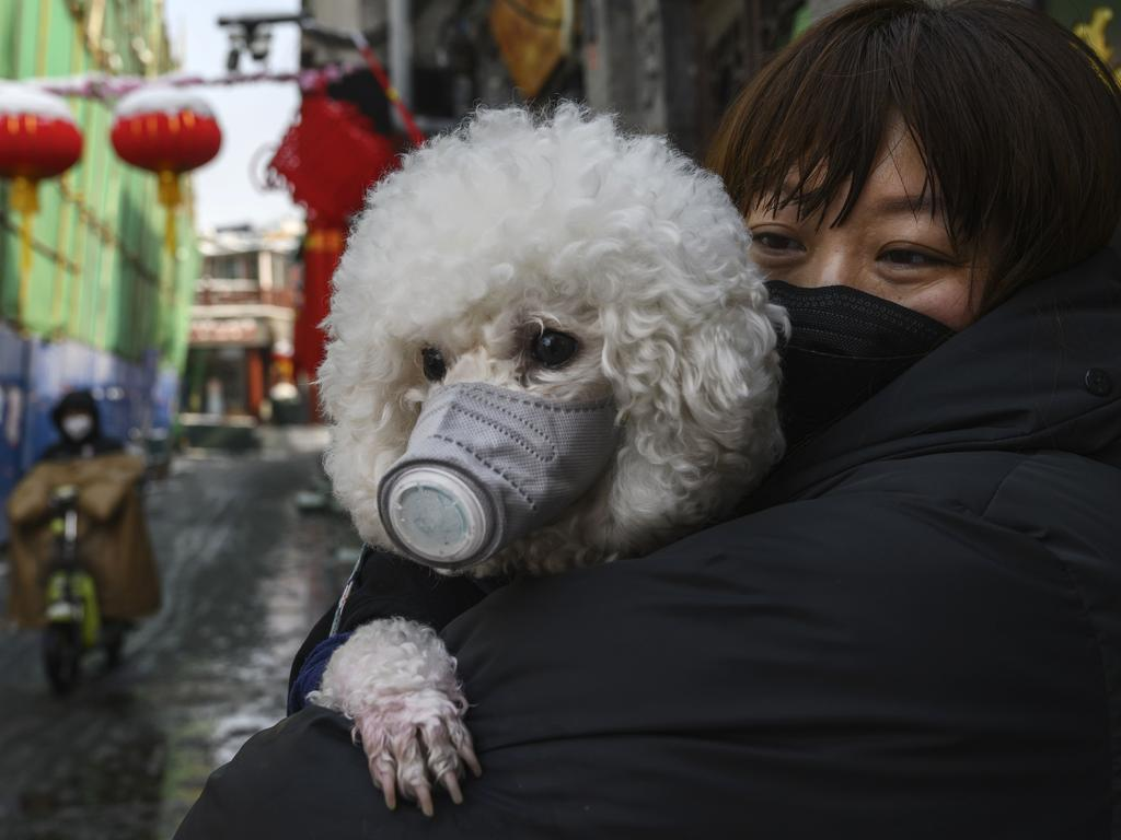 A Chinese woman holds her dog that is wearing a protective mask as well as they stand in the street. Picture: Getty Images