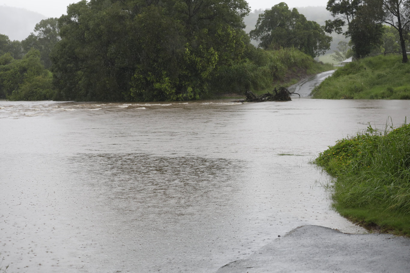 Flooding on Old Lismore Rd, Murwillumbah shortly before 9am on Thursday, February 13.