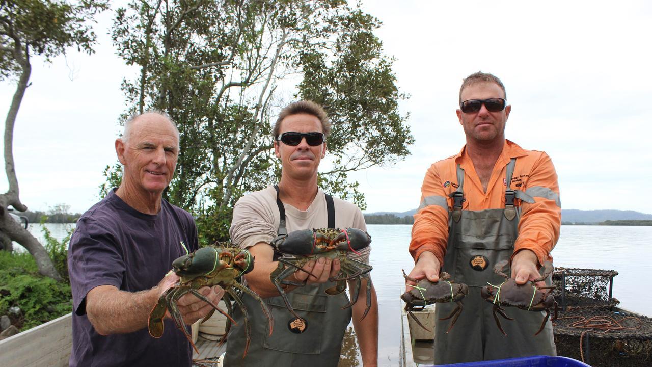 Clarence River crab fishermen Bill Clarke, Troy Billin and Gavin Shanklin.