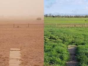 Incredible transformation gives hope to western graziers