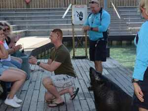 Perfect proposal: couple plan to 'seal' the deal