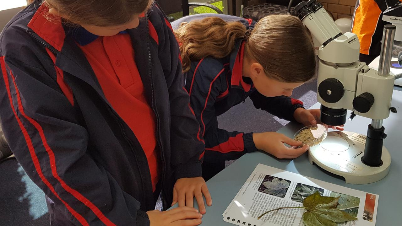 Students from around the nation will explore plant health as part of the Schools Plant Science Competition to be staged in Warwick.