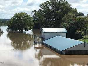 FLOOD UPDATE: Upper River levels remain steady, Yamba rises
