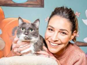 Rescue a pet that's your perfect match