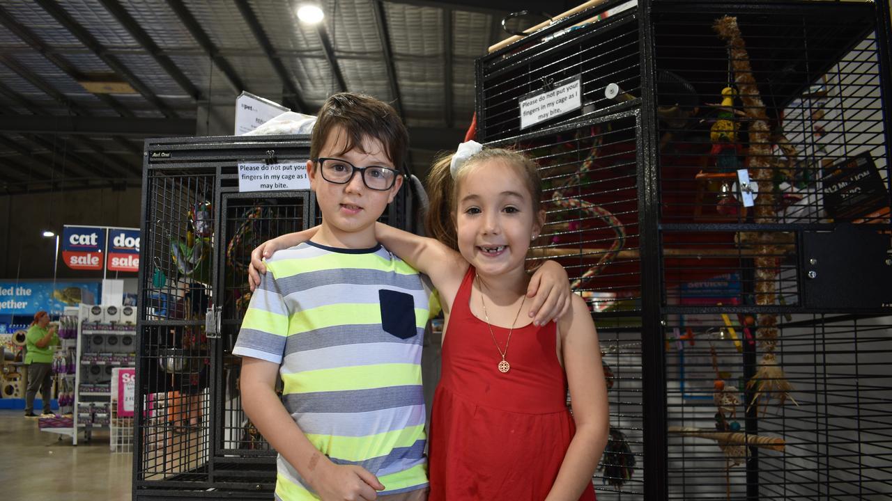 ADOPTION DAY: Kieran Hamilton, 8, with his sister Eden, 6, from Walkerston.