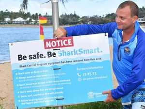 Shark drumlines back in Mackay waters