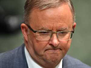 Shorten leaves Albo in a tough spot