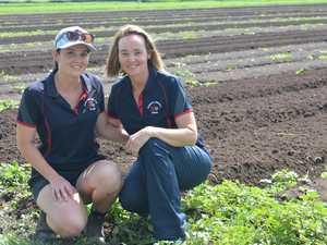 Farm dreams come to fruition for Lorena
