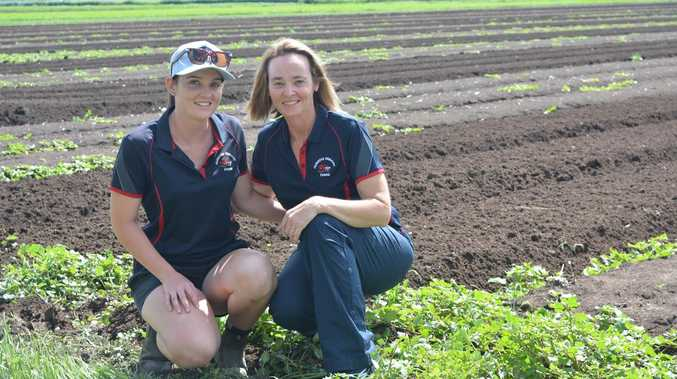 Farm dreams come to fruition for Lorena