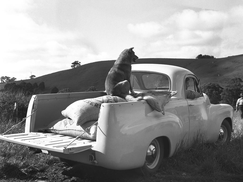 Holden Models through the years. FX Ute. Copyright: Chris Norman, Bandits & Co. Picture: supplied by Holden.