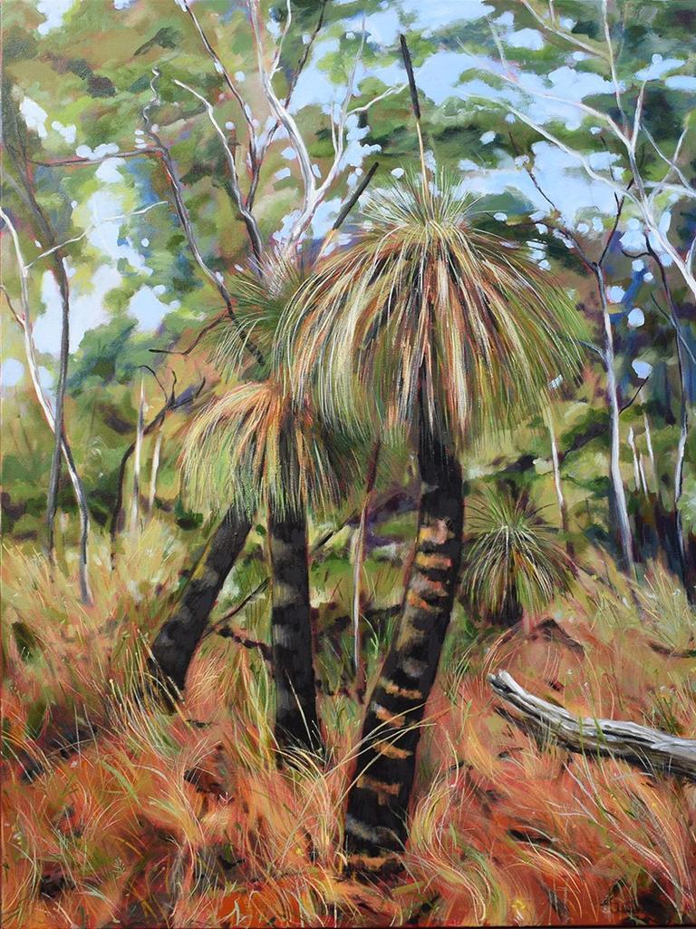 Grass Trees, Paddy's Flat by Julie McKenzie.