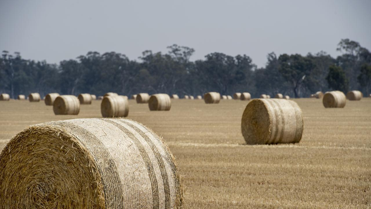 DATA NEEDED: The Australian Fodder Industry Association is calling for a national database for domestic hay supplies.