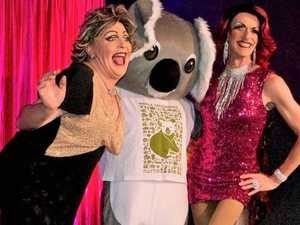 Drag queens hit jackpot for koala recovery