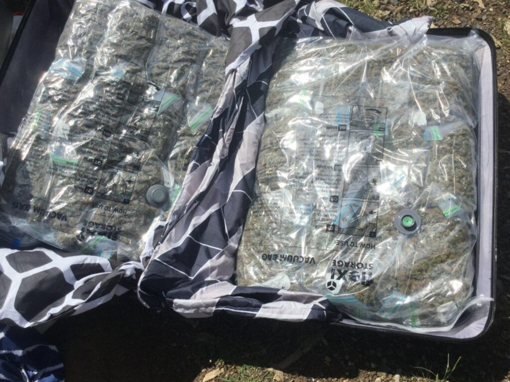 Police found five vacuum-sealed bags containing 30kg of cannabis during a traffic stop near Brisbane yesterday.