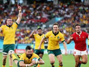 Local mental health program to support the Rugby World Cup