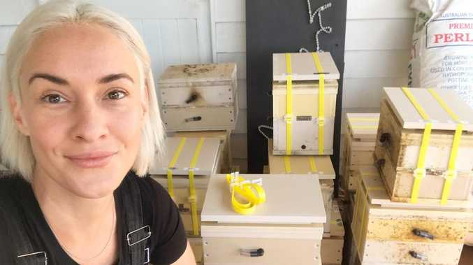 Bee happy with alternative therapy