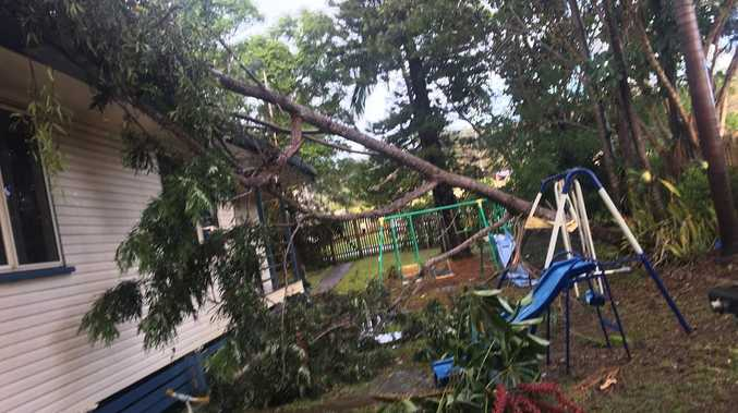 UPDATE: Powerlines, trees down after wild storm