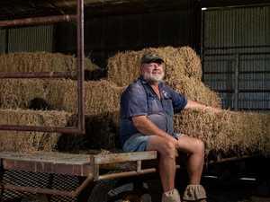 Lockyer hay growers back calls for national fodder database
