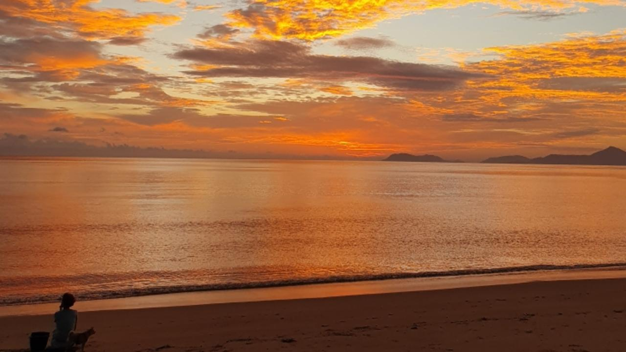 GOOD MORNING: A tropical sunrise at Palm Cove by Ross Palm.