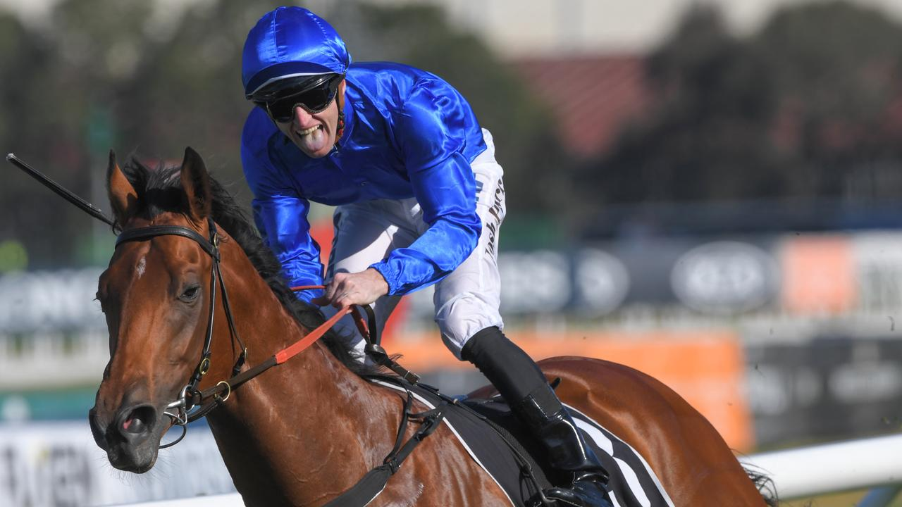 Star colt Bivouac could be a contender for Godolphin's spot in The Everest. Picture: AAP