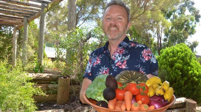 Learn how to create delicious plant-based dishes