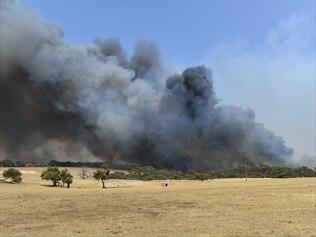 Bushfire smoke on Kangaroo Island, South Australia