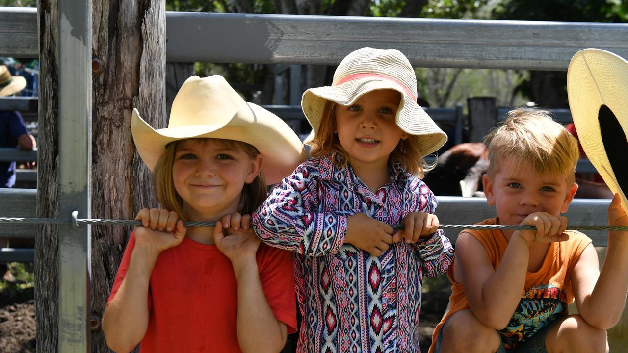 Scout Andrew, Ellira Cox and Django Andrew.