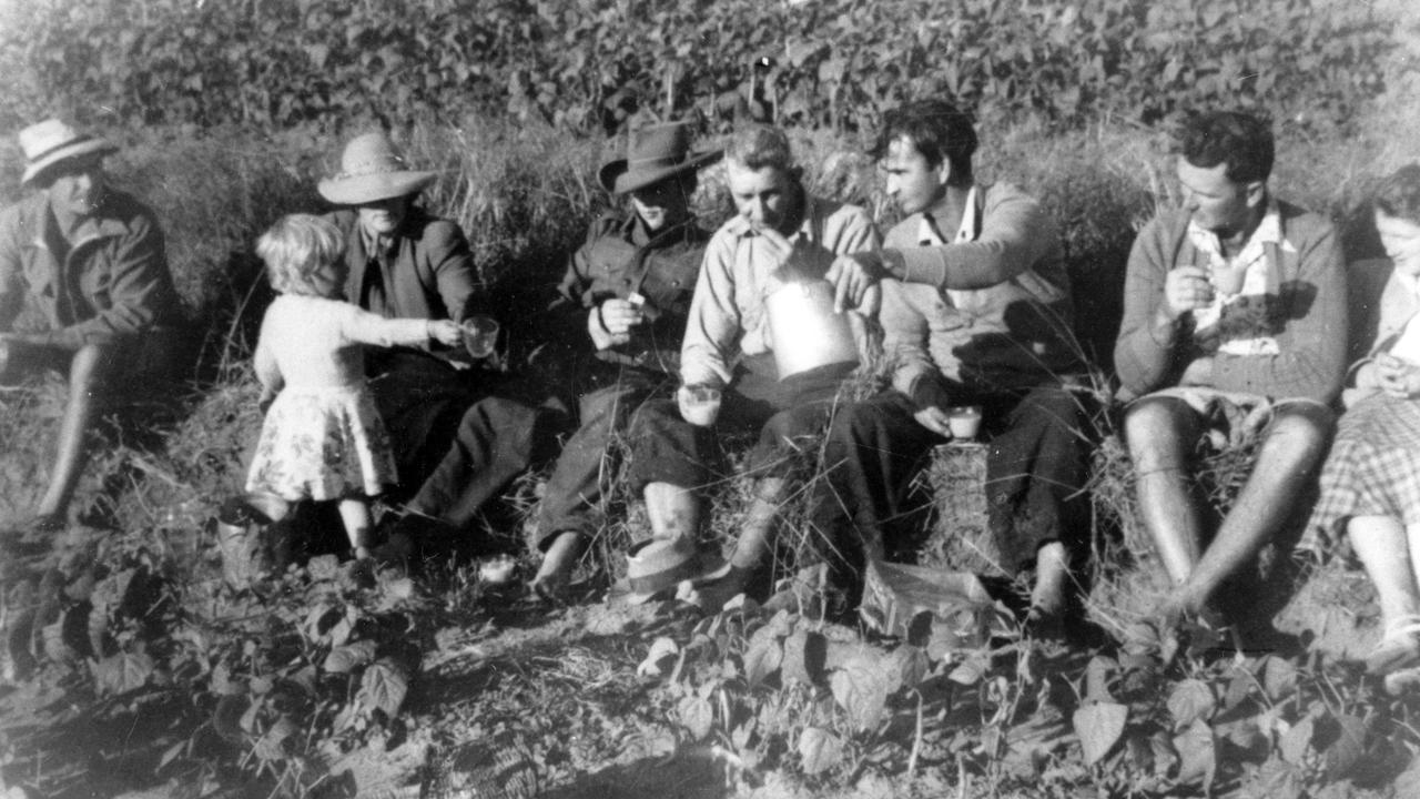 Bean pickers taking a break on Morgan's farm, Coolum, ca 1950 Left to right: Pop Morgan, Mrs Pollard and daughter Melody, Jimmy Pollard, Martin Oothuzen, Jack Morgan, Les Morgan, Nancy Holmes.