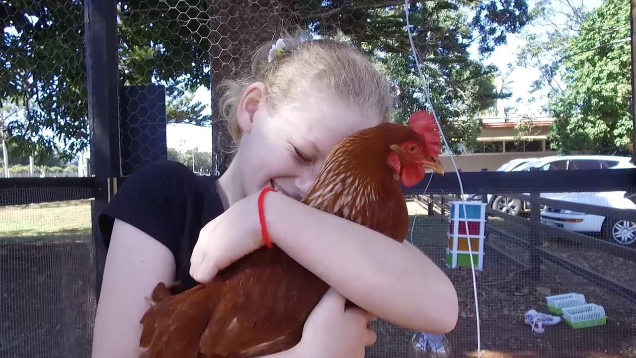 CREATIVITY SHINES: Bundaberg's Summer Farrelly won a number of awards for her work with chickens.