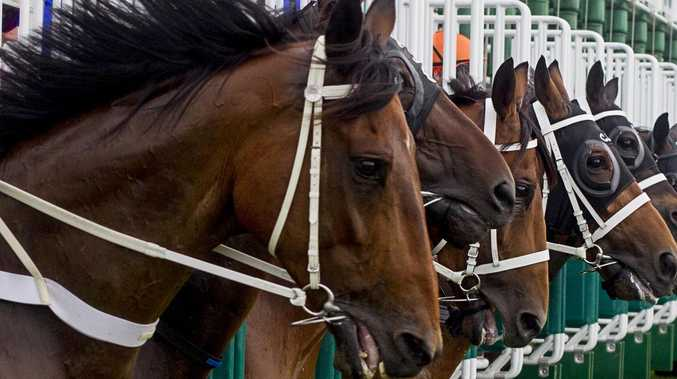 Horse racing industry gets a harsh warning