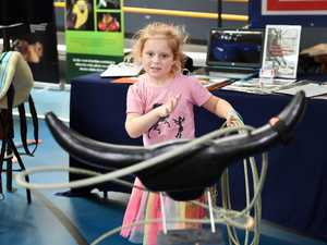 GALLERY: Fraser Coast Sports Expo
