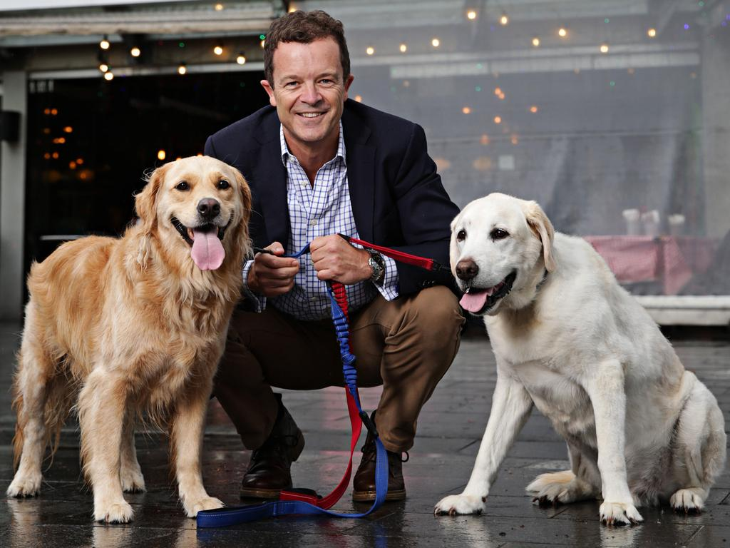 Attorney-General Mark Speakman with Golden Retriever Lucy and Labrador Ralph. Picture: Adam Yip