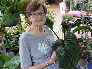 Discover how Bernadette's garden became home to a rare flower