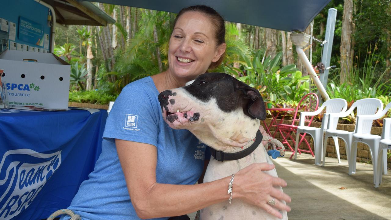 GOOD BOY: RSPCA Noosa's Kitty O'Brien with Duke await the arrival of his new 'forever home'.